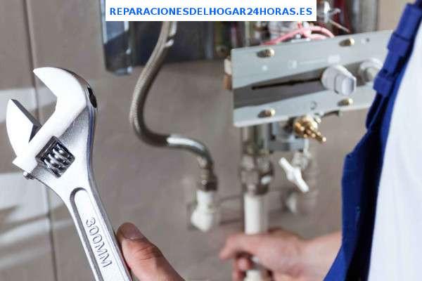 reparar calentador vaillant madrid